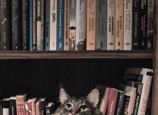 jakie książki polecacie