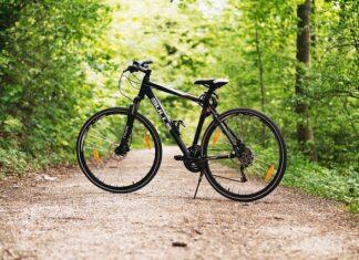 wynajem rowerów